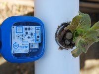 Smart Citizen Kit vs Lettuce