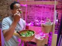 Guillaume eating his 1st aquaponic lettuce